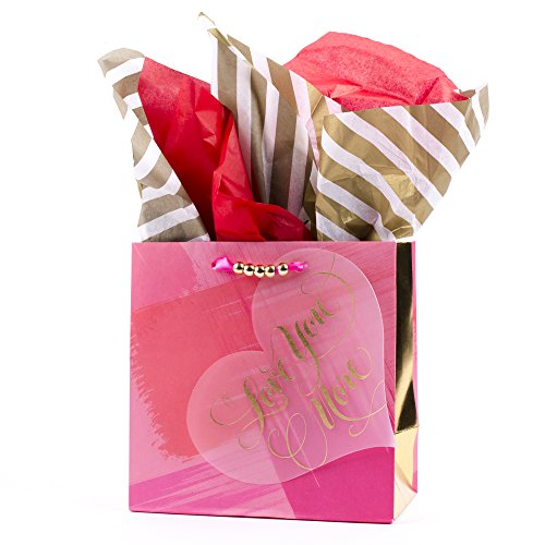 Frosted Plastic Globe (Hallmark Signature Medium Gift Bag with Tissue Paper (Love You Heart))