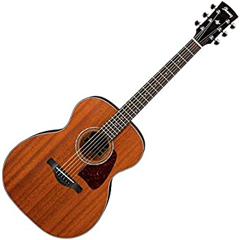 Ibanez AC240OPN Artwood Series Acoustic Guitar (Open Pore Natural)