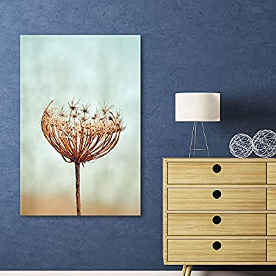 Canvas Wall Art - Closeup of a Dead Dandelion - Giclee Print Gallery Wrap Modern Home Art Ready to Hang - 24x36 inches