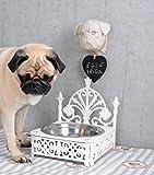 Nostalgischer Hundenapf, Fressnapf, Futternapf, Hundenapf, Futterspender für Hunde, Katzen und weitere Tierarten aus Gusseisen mit zwei Futternäpfen aus Edelstahl zum herausnehmen, spülmaschinenfest - Palazzo Exclusive