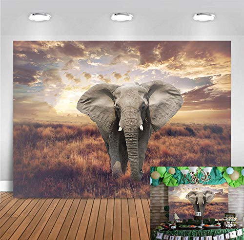 Fanghui 7x5ft Tropical African Forest Jungle Elephant Backdrop Banner Supplies Happy Birthday Party Photography Background Adult Child Party Decoration Photo Booth Props