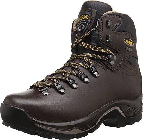 Asolo Women's TPS 520 GV EVO Chestnut Boot 6.5 D (M)