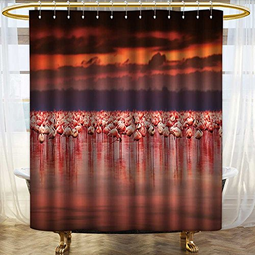 aolankaili Waterproof Mold Shower Curtain African Flamingos in The Lake Over Beautiful Sunset,Flock of Exotic Birds Non Toxic Eco-Friendly No Chemical Odor/W48 x L72 - Savona Iron