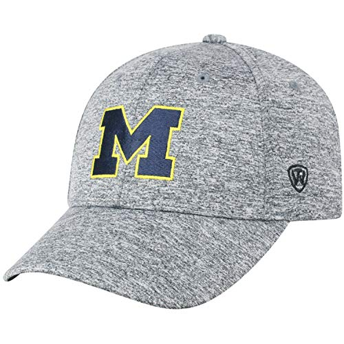 Top of the World Michigan Wolverines Men's Hat Icon, Charcoal, Adjustable (Michigan Wolverines Clothing)