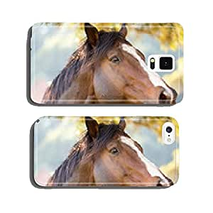 purebred racing horse cell phone cover case iPhone5