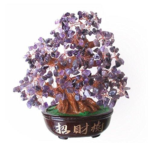 FengShuiYan 9.5