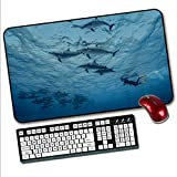 Extended Mouse pad, Large Gaming Mouse pad, Non-Slip Rubber Base Stitching Side Cloth pad.Mouse pad,A freediver Swims with Flock of dolphinsCompatible with All Computer Keyboards.