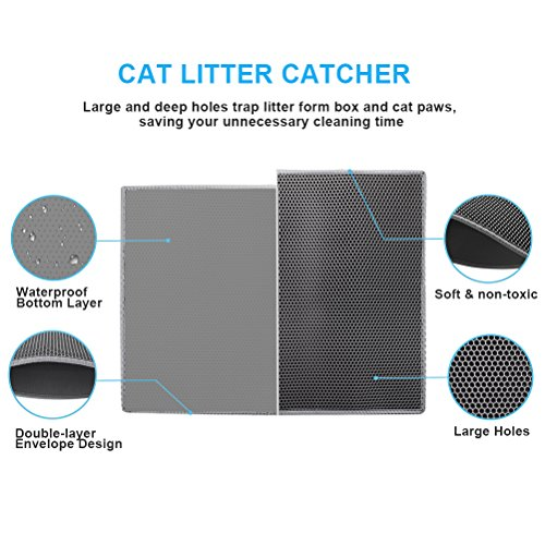 Buy what is the best litter for cats
