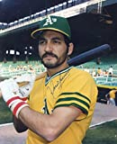Mario Guerrero Autographed/ Original Signed 8x10 Color Glossy Photo Showing Him w/ the Oakland Athletics in the 1970s
