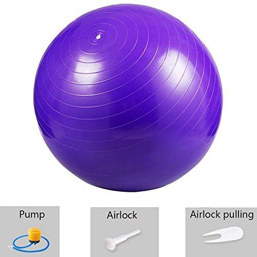 Obling 65cm Boule Yoga Ballon d'Exercice Épaisse Épreuve d'Explosion avec Pompe pour Yoga Amaigrissement Fitness