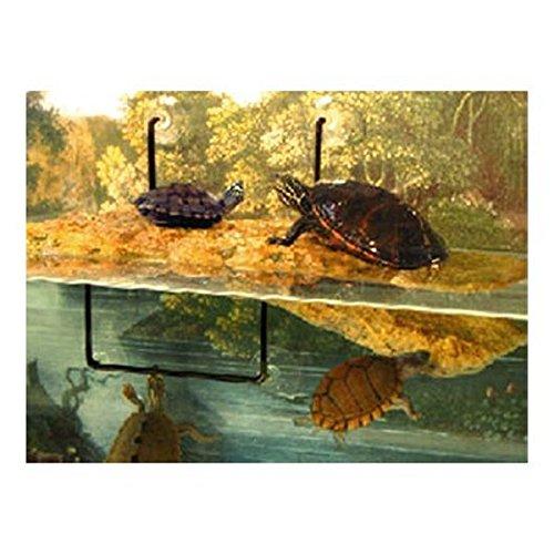 Zoo nbsp;ml Free tartarughiere Med For Mini Floating Dock Island Gammarus Island 100 ffvwr
