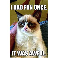 "Trends International Grumpy Cat Fun Wall Poster 22.375"" x 34"""