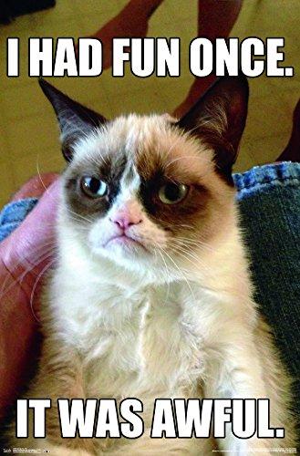 Trends International  Grumpy Cat Fun Wall Poster 22.375