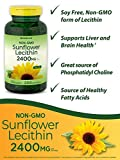 Sunflower Lecithin 2400mg | 200 Softgels | Rich