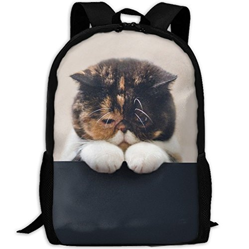 CY-STORE Beautiful Big Fluffy Animal Outdoor Shoulders Bag Fabric Backpack Multipurpose Daypacks For Adult by CY-STORE
