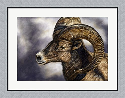 Desert Bighorn Sheep by Cory Carlson Framed Art Print Wall Picture, Flat Silver Frame, 31 x 24 (Bighorn Sheep Pictures)