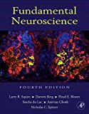 img - for Fundamental Neuroscience (Squire,Fundamental Neuroscience) book / textbook / text book
