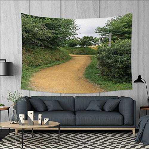 (Anniutwo Hobbits Beach Throw BlanketElf Path in Woods Hobbit Land in The Shire Zealand Movie Set Image Print Tapestry Wall Hanging 3D Printing W60 x L40 (inch) Green)