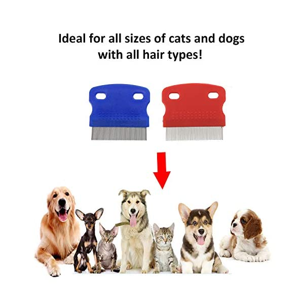 2 Pack Pet Dog Cat Flea Comb Tear Eye Stain Remover Combs, Hair Brush Effectively Clean and Removes Tangles, Dirt, Fleas… Click on image for further info. 6
