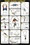 "Weight Training Flex. 24"" X 36"" Laminated Poster"