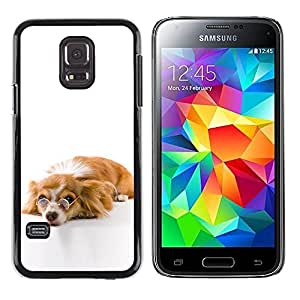 Impact Case Cover with Art Pattern Designs FOR Samsung Galaxy S5 Mini, SM-G800 Funny Glasses Dog Cute Betty shop