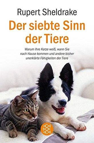 Der siebte Sinn der Tiere: Warum Ihre Katze weiß, wann Sie nach Hause kommen und andere bisher unerklärte Fähigkeiten der Tiere