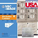 18 Electrolux Canister Vacuum Cleaner Style R Filter Bags 9000...