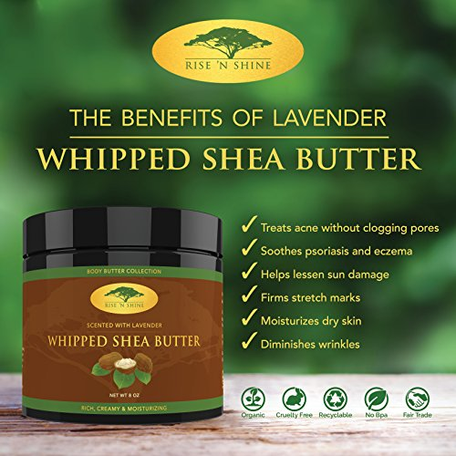 (8 oz) Lavender Whipped African Shea Butter Cream - Pure 100% Raw All Natural Organic Moisture for Soft Skin and Natural Hair - Body Butter Improves Blemishes Stretch Marks Scars Wrinkles & Eczema