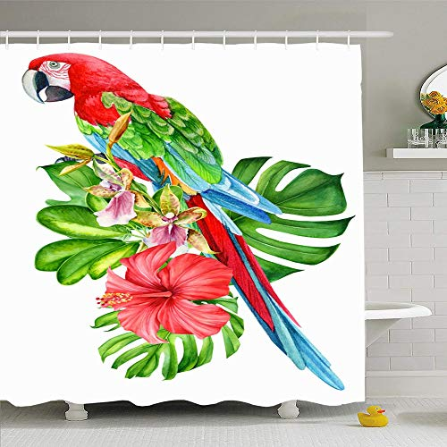 Ahawoso Shower Curtain Set with Hooks 72x72 Colorful Floral Ara Tropical Bird Parrot Plants Palm Animals Wildlife Aloha Green Beauty Bouquet Waterproof Polyester Fabric Bath Decor for Bathroom