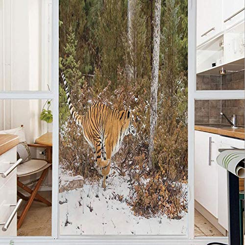 (Decorative Window Film,No Glue Frosted Privacy Film,Stained Glass Door Film,Bengal Tiger in Snowy Jungle Hunting and Cruising for Prey Furry Majestic Mammal Photo,for Home & Office,23.6In. by 78.7In O)