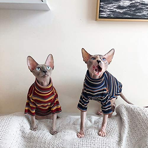 Bonaweite Hairless Cats Stripe T-Shirt, Breathable Cat Wear Clothes Vest Shirts for Sphynx, Cornish Rex, Devon Rex, Peterbald 22