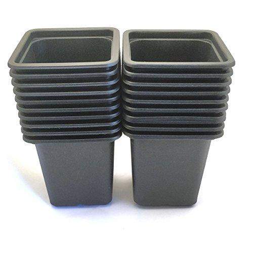 Vilmorin - Pack de 20 Godets carrés noir en plastique 7cm