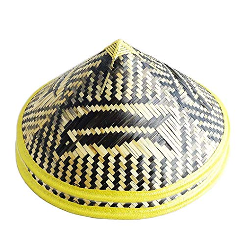(Sunny Hill Pack of 2 Chinese Oriental Bamboo Fish Pattern Straw Cone Garden Fishing Hat)