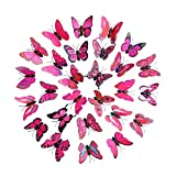 LiPing 30PCS Wall Paper 3D Rainbow Butterfly Wall Stickers-Removable Decal Art Home Decor Painting Supplies Room Decor Kit-Kids Bedroom Decoration (Hot Pink)