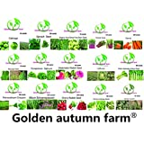 Golden autumn farm-New season Organic vegetable seeds set of 15