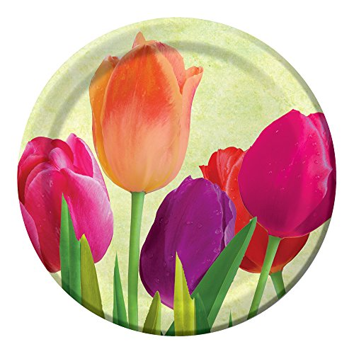 Creative Converting 8 Count Sturdy Style Paper Spring in Bloom Lunch Plates, 7