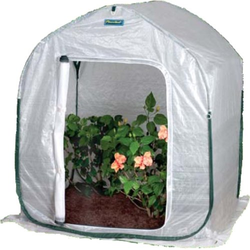 Flower House FHPH130 PlantHouse 3 Pop-Up Plant House (Flowerhouse Portable Greenhouse)