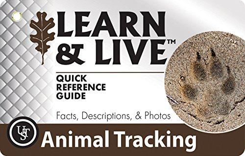 UST Learn & Live Educational Card Set, Animal - Live Sunnies