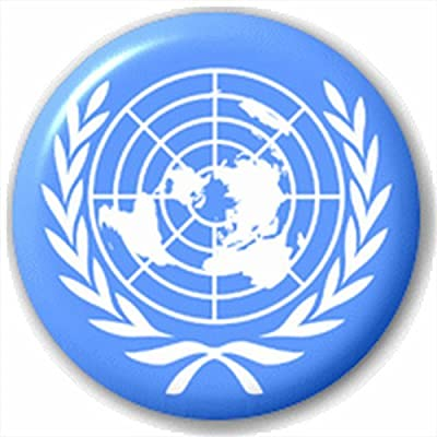 United Nations Flag Small 25mm Lapel Pin Button Badge Novelty Un