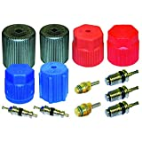PartsChannel OE Replacement A/C System Valve Core and Cap Kit Town Car 1994-2007