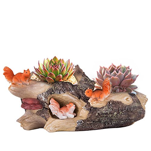 Vencer Succulent Planter and Air Plant Pot,Office Desktop Potted Stand,Home & Office Decor Accent,New Design,Chasing Squirrels,VF-076