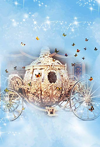 Baocicco Cinderella Carriage Fairy Tale Backdrop 5x7ft Photography Background Dreamy Blue Foggy Butterfly Shiny Lights Children Stories Girl Dream Prince Beautiful Love -