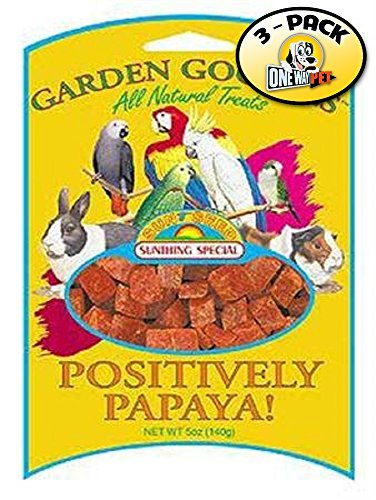 Sun Seed Garden Goodies Bird Treat, Positively Papaya, 5-Ounce by Sun Seed