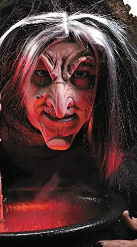 Rubie's Reel F/X Evil Witch Kit, Red, One Size