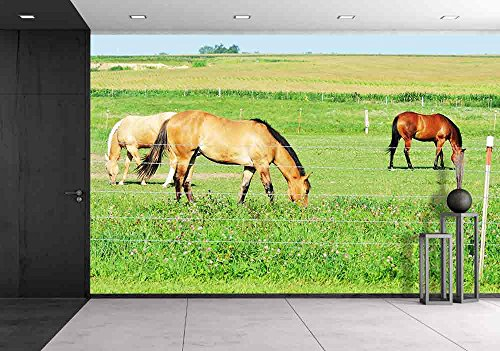 s Grazing - Removable Wall Mural | Self-adhesive Large Wallpaper - 100x144 inches (Buckskin Ranch)