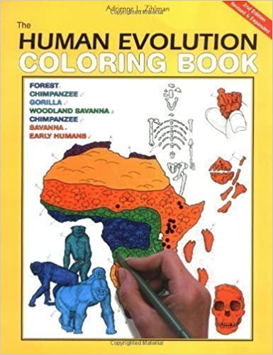 The Human Evolution Coloring Book The Human Evolution Coloring Book ...