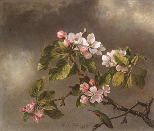 Berkin Arts Martin Johnson Heade Giclee Canvas Print Paintings Poster Reproduction(Hummingbird and Apple Blossoms) ()