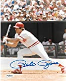 Pete Rose Cincinnati Reds Autographed Signed 8 x 10 Photo -- JSA - (Mint Condition)