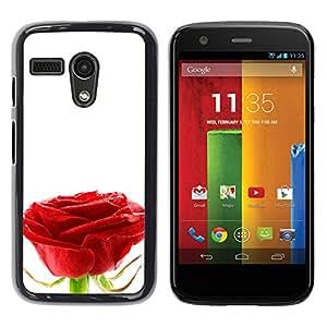 Stuss Case / Funda Carcasa protectora - Purity Of A Single Rose - Motorola Moto G 1 1ST Gen