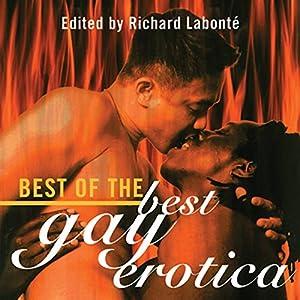 Best of the Best Gay Erotica Audiobook